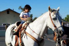 2016-08 Horseriding
